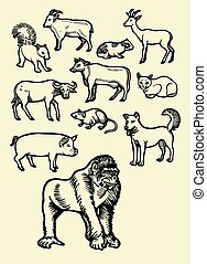 Animal sketch 2