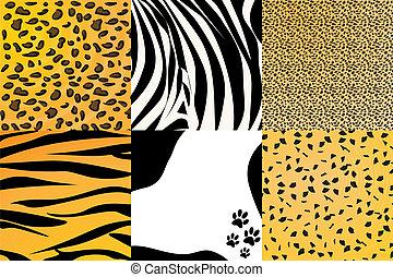 Animal skin - Vector illustration of different animal skin