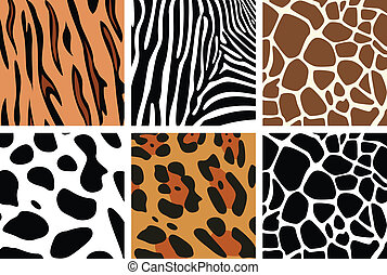 animal skin textures - vector animal skin textures of tiger,...
