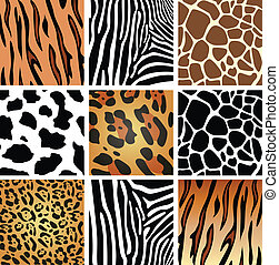 animal skin textures - vector animal skin textures of tiger,...