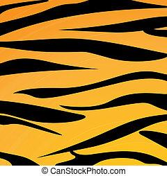 Animal skin - Vector illustration of animal skin
