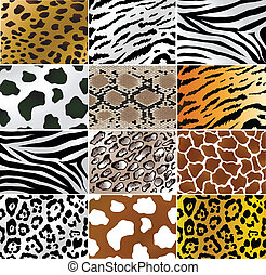 Animal skins - Illustation of different animals and snakes...