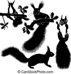 animal squirrel tree Christmas tree