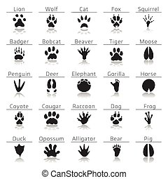 Animal track prints set, with names and reflection, on white...