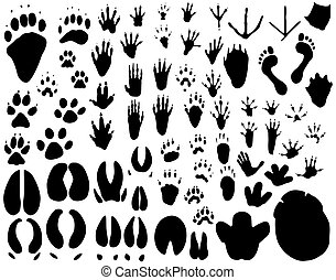 Collection of outlines of animal foot prints