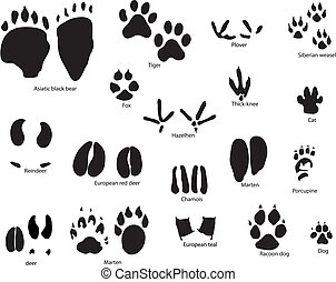 animal trails with title - Biggest collection of animal and ...