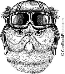 Animal wearing aviator helmet with glasses. Vector picture. Persian cat Cute Fuzzy Hand drawn image for tattoo, emblem, badge, logo, patch