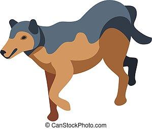 Animal wolf icon, isometric style