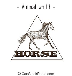 Animal World Horse Triangle Background Vector Image