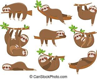 animale, bradipo, vettore, giungla, rainforest., cartone ...