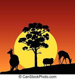 animale, in, il, colore natura, vettore