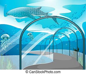 animales, acuario, mar, escena