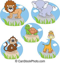 animales, caricaturas