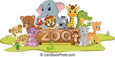 animales, colección, zoo