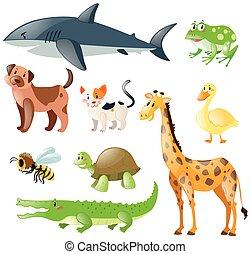 animales, conjunto, blanco, plano de fondo