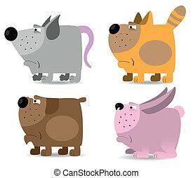 animales domésticos, conjunto
