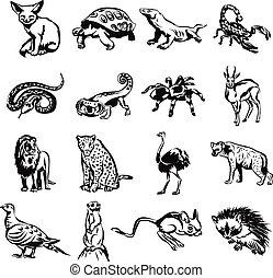 animales, garabato, negro, desierto, vector
