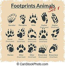 animales, huellas, vector, -, set.