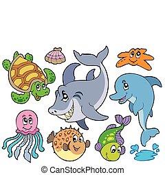animales, mar, colección, feliz