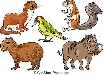 animales salvajes, conjunto, caricatura, ilustración