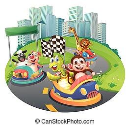 animali, automobili correre