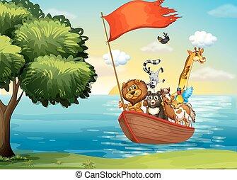 animali, barca