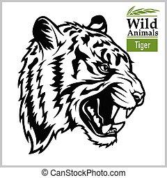 animali, bianco, vettore, arte, illustration., isolare, asia, series., tiger, head., fondo., grafico, nero