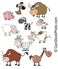 animali, cartone animato, collezione