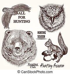 animali, collezione, vettore, mano, disegnato