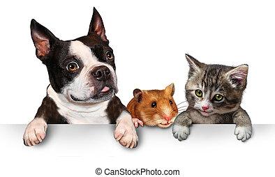 animali domestici, segno