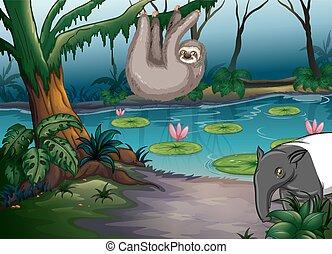 Stagno animali illustrazione molti vettore di clip art for Animali da stagno