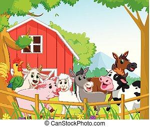 animali fattoria, fondo, collezione