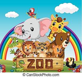 animali, guida, collezione, zoo