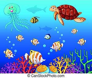 animali, molti, oceano, mare, sotto, tipi