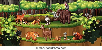 animali, scena, foresta, molti