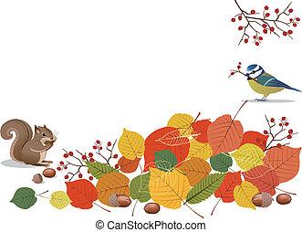 animali, scenes-, foglie, autunno, ghiande, arancia