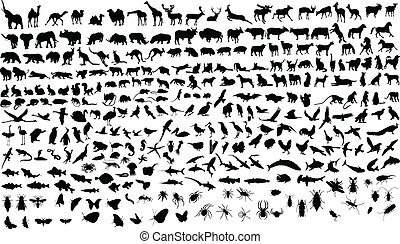 Animals - 300 vector silhouettes of animals (mammals, birds...