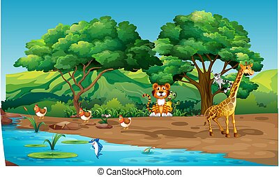 animals are playing on the river bank in the forest