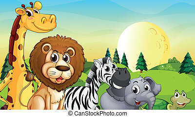 Animals at the hilltop with pine trees