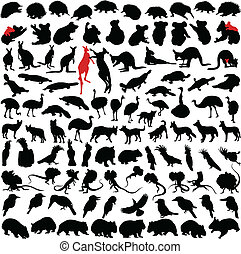 Animals Australia - Hundred silhouettes of wild rare animals...