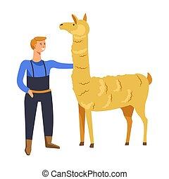 Animals breeding o n farm, male with llama vector. Farmer...