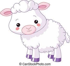 animals., ferme, agneau