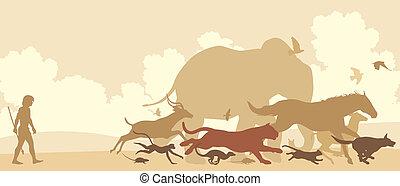 Animals fleeing man