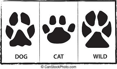 Animals foot