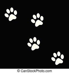Animals footprints