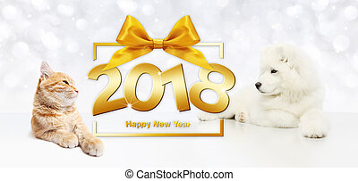 animals happy new year concept, cat and dog with gift box frame and golden satin ribbon bow