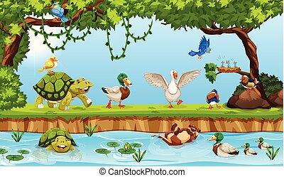 Animals in a pond scene