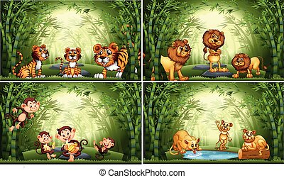 Animals in bamboo forest