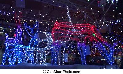 animals in lights