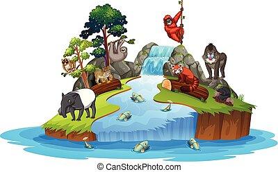Animals on island scene